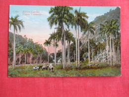 Cuba Cuban Landscape --Ref  2878 - Cuba