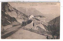 74   CHAMONIX  MONT  BLANC  CHEMIN  DE  FER ET  HOTEL  DU  MONTENVERS  + TRAIN  1X409 - Chamonix-Mont-Blanc