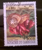 FRANCOBOLLI STAMPS CAMBOGIA CAMBODGE 1999 SERIE MOLLUSCHI - Cambogia