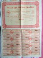 Société Des Mines De Zinc De Cho Don - Part Bénéficiaire Au Porteur - Action 1925 - Mines