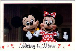Mickey's Florida Collection. VG. - Disneyland