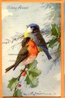 HB481, Illustrateur, Oiseaux, Rouge-gorge, Mésange, Bonne Année, Bird,1305, Circulée 1927 - Klein, Catharina