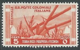 1933 EMISSIONI GENERALI DECENNALE 5 CENT MH * - I41-5 - General Issues