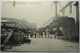 AVENUE DU PALMIER - SALINS D'HYERES - Hyeres
