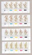 Bophuthatswana Blocks Of MNH Stamps 1981 Grasses - Bophuthatswana
