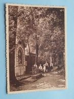 Pensionnat Du Sacré-Coeur / Dans Le Parc ( Thill ) Anno 19?? ( Zie Foto Voor Details ) !! - Frameries
