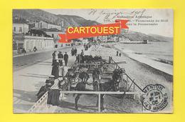 CPA 06 Menton Promenade Du Midi 1905 Anes Donkeys ( Sup. Obl. ) - Menton