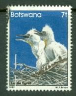 Botswana: 1982   Birds   SG521     7t    Used - Botswana (1966-...)
