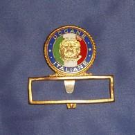 Distintivo Smaltato Dogane Italiane - Obsoleto - Usato - Incompleto - Italian Customs Obsolete Badge - Police