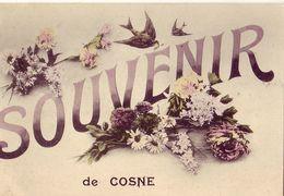 58 Souvenir De COSNE - Cosne Cours Sur Loire