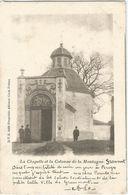 6Rm-545:  La Chapelle Et La Colonne De La Montagne Grammont  D.V.D. 8428 - Geraardsbergen