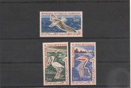 MAURITANIE OISEAUX P.A.  N° Y/T : 18/20** Côte: 40,00 € - Mauritanie (1960-...)