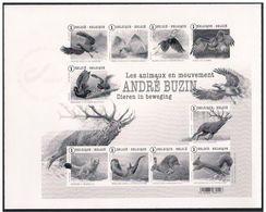 Belgique Oiseaux Birds Buzin Cerf Hibou Owl Noir Et Blanc  Non Denteles ND Canard Duck - Vögel