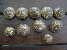 Lot Boutons Pour Vareuse  Grenade Or. - 1914-18