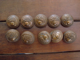 Lot Boutons Pour Vareuse  Grenade Or. - Buttons