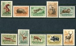 """1953 Hungary MH OG Complete Set Of 10 Beautiful Stamps """"Domestic Animals"""" Michel # 1285-1294 - Unused Stamps"""