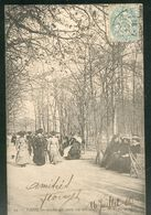 Allée Au Bois De Boulogne - Parks, Gardens