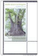 2006.Mountainous Karabakh, Old Tree, Platan, 1v, Mint/** - Armenia
