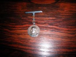 Médaille  Du Maréchal PETAIN Legion Française Des Combattants - France