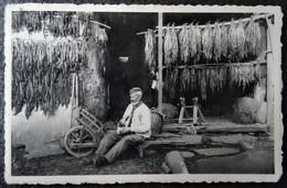 Membre Sur Semois - Le Vieux Planteur De Tabac - Métier - Belgien