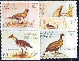 0376 Birds Fauna 1991 Shr 5v Set MNH ** - Otros