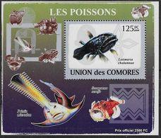 2009 Union Des Comores N° BF Nf** MNH . 3  Blocs-Feuillets . Poissons - Fische