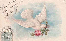 CARTE FANTAISIE. PIGEON MESSAGE D'UNE ROSE . ANNEE 1905. - Vogels