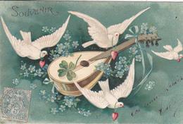 CARTE FANTAISIE. SOUVENIR. PIGEONS ET MANDOLINE. ANNEE 1905. - Vogels