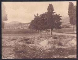 LARGE OLD PHOTO ARGOSTOLI ( Αργοστόλι ) ROAD TO ST GERASSIMUS - KEFALONIA - 15.5 X 21.5cm ! - Grèce