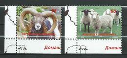 Macedonia 2018 Fauna.Domestic Animals - Sheep/mouton/Schaf  **MNH - Macedonia