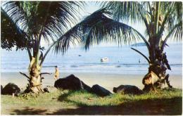 COSTA RICA   PUNTARENAS  Playas Del Coco - Costa Rica