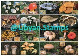 LIBYA - 1985 Mushrooms (16 Maximum-cards) - Champignons