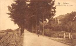 ROCHEFORT - Promenade Du Thiers Des Falizes - Rochefort