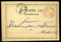 92547 BEREGSZÁSZ 1874. Díjjegyes Levelezőlap Miskolcra Küldve - Postal Stationery
