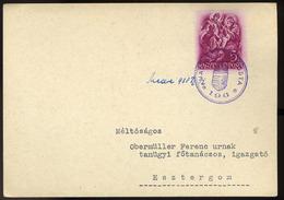 90773 MEDVE / Medveďov 1938. Levelezőlap , Kisegítő Gumi Bélyegzéssel / MEDVE 1938 P.card Escort Rubber Pmk - Hungary