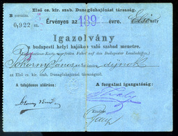92492 189.. D.D.S.G. Igazolvány Budapesti Helyi Hajókon Való Szabad Menetre - Other