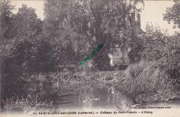 44-  Carte Postale Ancienne De SAINTE LUCE SUR LOIRE   Chateau Du Petit Plessis  L'Etang - Otros Municipios