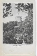 AK 0865  Burg Greifenstein ( St. Andrä-Wördern ) - Verlag Kölz Ca. Um 1910 - Tulln