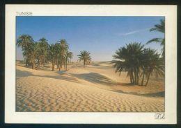 Túnez. Le Sahara. Ed. Tunisie Lumiere Nº 297. Circulada. - Túnez