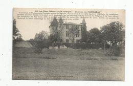 Cp , 24 , Château De PANISSEAU , Vierge - France