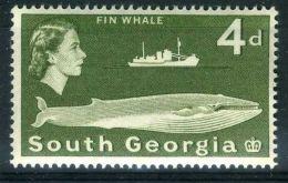 GEORGIE DU SUD ( POSTE ) : Y&T N°  14  TIMBRE  NEUF  SANS  TRACE  DE  CHARNIERE , A  VOIR . - South Georgia