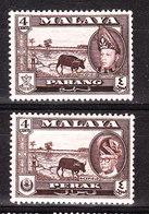 Malaya  -  Pahang E Perak - 1957. Coltivazione Del Riso. Paddy Field And Buffalo. MLH - Agriculture