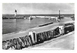 56 Quiberon Filets Séchant à Port Haliguen (2 Scans) - Quiberon