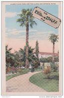 San Antonio - Cpa / Alamo Plaza Park And The Alamo. - San Antonio