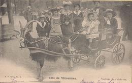 Vincennes : Bois De Vincennes - Voiture Aux Chèvres - Vincennes
