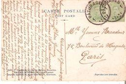 CP. PAIRE TP. N° 137 Obl. FORTUNE CENTRE VIDE PATURAGES 1 Du 6/1/1919 V/PARIS Voir Verso - Postmark Collection