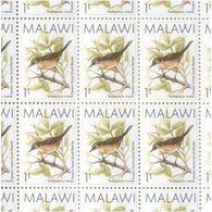 Malawi Sheet Of MNH 1T Birds Definitives Stamps 1988 - Malawi (1964-...)