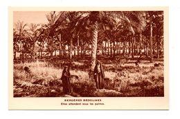 Égypte . Bergères Bédouines . Mission Des Jésuites Français En Égypte - Réf. N°8070 - - Egypt