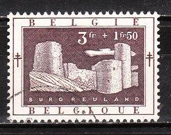 905  Antituberculeux - Bonne Valeur - Oblit. - LOOK!!!! - Belgium