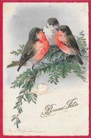 En L'état CPA AK Illustrateur Catharina KLEIN - Oiseaux Birds - Klein, Catharina